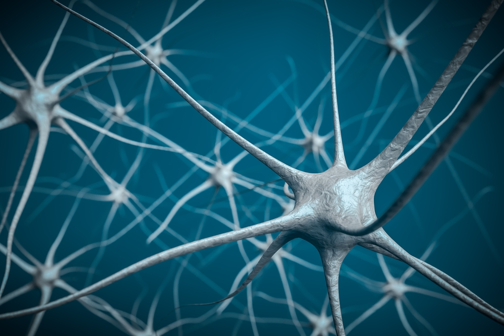 Neurons in brain, 3D illustration of neural network.